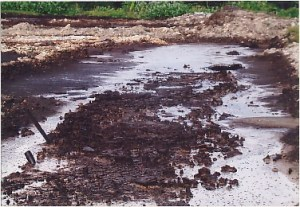 tanah tercemar limbah minyak bumi